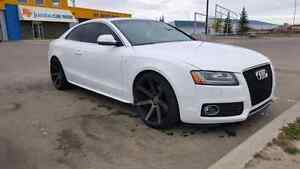 Audi S5 Awd Mint condition  (trades are welcome)