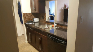 One Bedroom Condo near Chinook for Rent - August 1st