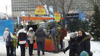 Winterlude at Confederation Park