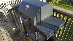 Mint Stove Coal BBQ Kitchener / Waterloo Kitchener Area image 2