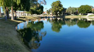 Centrally Located Phoenix Vacation Rental on Beautifully Lake