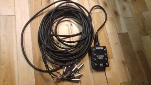 Hosa 8 input 100 foot snake
