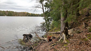 Vacant Land on Loon Lake - 1 Acre
