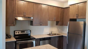 3 Bed Condo Apartment for Rent
