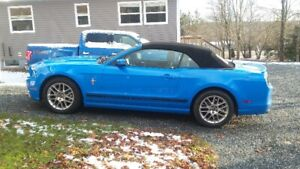 ford mustang for sell