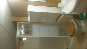 1 Bedroom Furnished Basement Apartment