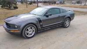 2006 Ford Mustang V6 4.0L Custom Paint New Tires Finance