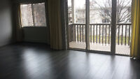 Large Newly Renovated One Bedroom for Rent on Pandosy Street