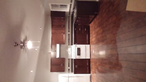 New apartment for rent 850.00 in Dauphin
