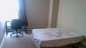 one bedroom apartment available 28 October