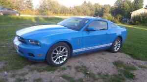 2010 Mustang for sale.