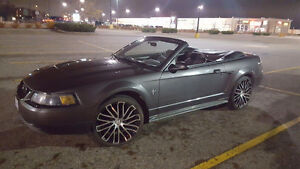 2003 Ford Mustang Convertible.  Reliable, fun and great on gas! Prince George British Columbia image 1