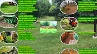 Lawn/Grass Cutting and Care