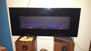 Electric fire place/heater