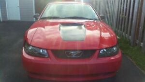 For sale 2002 mustang