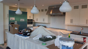 Pro Painting and Property Services Peterborough Peterborough Area image 4