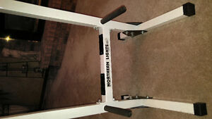 Tricep Chest Peck Dip Station Mint Condition Kitchener / Waterloo Kitchener Area image 1