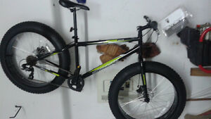 New fat bike