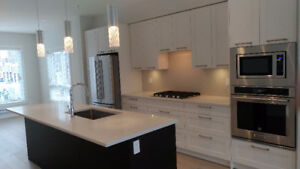 Surrey White Rock 3 Bed 2.5 Bath Brand New Townhome for rent!