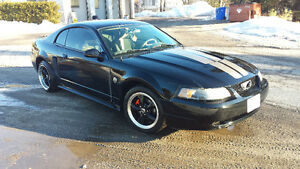 Looking to trade my 2004 Mustang towards a truck or 4 wheeler ..