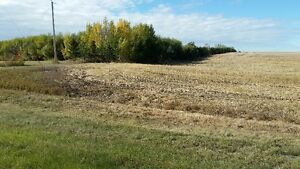 Bare Country Acreage For Sale