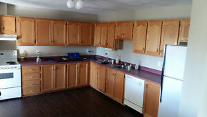 Avbl FEB 1st 2017,1 room in a 2 bedroom apartment - Lacewood