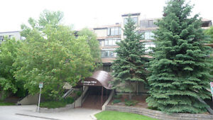 HUGE INNER CITY EXECUTIVE CONDO!! JUST OFF OF 17 AVE SW!!