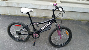 "Youth CCM 20"" Girls Mountian Bike 20"" tires -Excellent Condition"