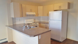 Newer Apartment in West Lethbridge