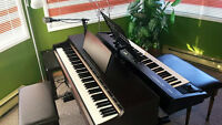 Summer Lessons- Voice, Piano, Flute, Trumpet and Songwriting