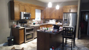Kitchen Cabinets, Doors, Drawer Fronts and Handles