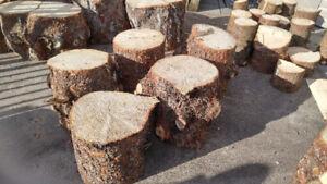 Bûches décoratives 13-14 pouces Épinette du Colorado