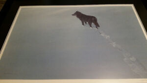 Black Wolf by Robert Bateman
