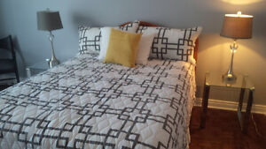 Large furnished 1 bedroom 1 den college and church downtown