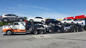 Car Carrier and Extra Trailer