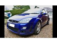Focus RS mk1 wanted
