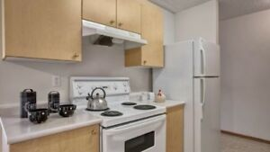 2 Br apartment available asap