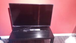 45 inch Insignia flat screen