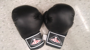 Boxing gloves $25