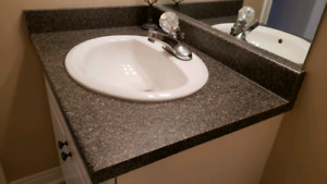 Countertop with sink and Delta faucet