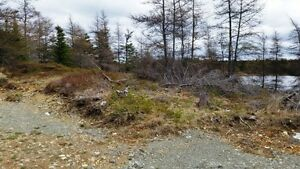 257C Conception Bay HWY - Bay Roberts, NL - MLS# 1130605