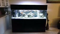 150 Gallon Acrylic Aquarium,Stand and Canopy