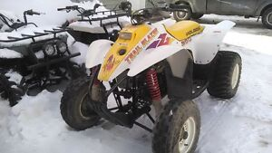 98 Trail Blazer 250 Automatic 2 Stroke chain drive