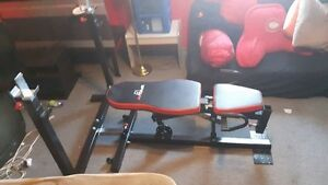 Weight Press Bench AmStaff Olympic