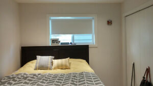 2 Bedroom Newly Renovated High Ceiling Basement Suite - Shared