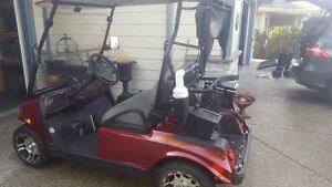 2012 AWG Golf Cart