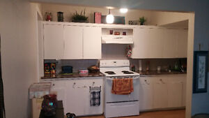 1 bedroom apartment for rent june 1st