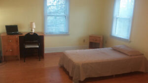 126 Sophia Street, Room for rent