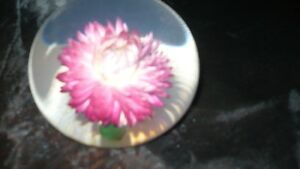 "VINTAGE NATURE'S PAPERWEIGHT MID CENTURY BY ""TARAX"" Kitchener / Waterloo Kitchener Area image 5"