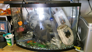 Pet smart 36gal fish tank and vanity stand
